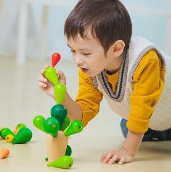 Mikado Cactus Plan Toys